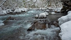Stone Cold (Matthew James Lewis) Tags: washingtonstate water washington winter snow rocks longexposure landscape bigquilvalley bigquilceneriver vinemaple cedertrees aldertrees ice olympicpeninsula olympicnationalforest