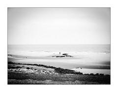 Apollon sortant de l'onde par temps couvert. (Scubaba) Tags: europe france pasdecalais noirblanc noiretblanc bw blackwhite mer sea