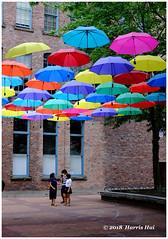Umbrellas Are Back - Yaletown XT6680e (Harris Hui (in search of light)) Tags: harrishui fujixt1 digitalmirrorlesscamera fuji fujifilm vancouver richmond bc canada vancouverdslrshooter mirrorless fujixambassador xt1 fujixcamera fujixseries fujix fujixf35mmf2 fujiprimelens fixedlens standardlens yaletown umbrellas art installation street streetart
