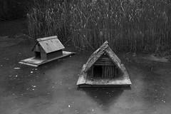 Frozen (Gilas1) Tags: ice kranjskagora jasna lake bw slovenia wood house handmade