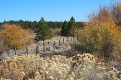Sumpter Valley, Oregon (Eclectic Jack) Tags: eastern oregon trip october 2018 rural agriculture farm farming autumn fall mountains abandoned house structure home