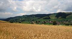DSC05624 (ursrüegsegger) Tags: linden juli august getreideernte bauernhöfe landschaft regenbogen