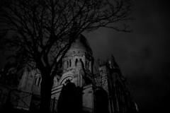 l'arbre de Montmartre Paris (laurent.triboulois) Tags: arbre nigth paris street montmartre blackandwhite