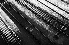 Winter rails (Eric Flexyourhead) Tags: vancouver canada britishcolumbia bc city urban detail fragment winter snow train tracks rail traintracks railline monochrome grainy gritty highcontrastbw blackwhite bw ricohgr