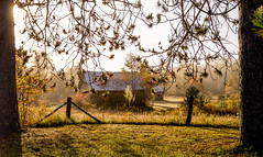 The Barn Beyond (Anvilcloud) Tags: riverwood riverwoodoctober2016 autumn autumncolour easternontario canada hff fence fencefriday