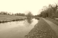 Canal west from Hagg Bank  (Peak Forest Canal)   February 2019 (dave_attrill) Tags: disley peakforest canal towpath peakdistrict nationalpark derbyshire cheshire february 2019 sepia cheshirering