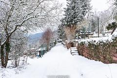 Dilsberg Snow Path - January 2019 I (boettcher.photography) Tags: winter januar january schnee snow germany deutschland badenwürttemberg neckargemünd dilsberg wintermärchen winterwunderland winterwonderland sashahasha boettcherphotography boettcherphotos path weg pfad 2019