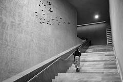 DSCF1826 (Thorsten Burkard) Tags: basel treppenhaus museum kunstmuseum staircase