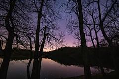 Am Weinfelder Maar (clemensgilles) Tags: stargazing astrophotography astrophotographers astrofotographie nightphotography nachtfotografie longexposure vulkaneifel maar lakeside trees deutschland eifel germany