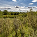 Beaver Creek Conservation Area, Saskatchewan