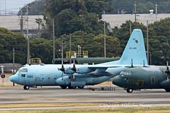 KC130H HERCULES 85-1080 JASDF (shanairpic) Tags: military transport c130 kc130 lockheedhercules komaki nagoya jasdf 851080