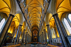 Salisbury Cathedral central nave, Wiltshire, UK (Andrey Sulitskiy) Tags: salisbury wiltshire england uk