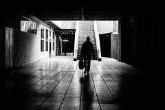 (fernando_gm) Tags: 35mm fujifilm madrid street xt1 monochrome monocromo man monocromatico silhouette silueta blackandwhite bw blancoynegro calle callejera ciudad city contrast contraste backlight contraluz fuji f14 people person persona human hombre humano dark oscuro sombras shadows