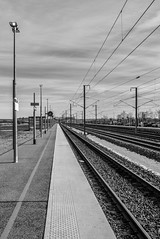 Gare Meuse TGV (Thierry-Photos) Tags: noirblanc gare leicax1 leica tgv nb meuse
