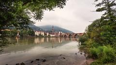 Am Heidelberger Neckarufer.jpg (Helmut31405) Tags: sommer badenwürttemberg neckar 2016 grauverlaufsfilternd09 heidelberg germany new