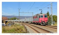 Re 420 503 Travys - Busswil (CC72080) Tags: re420 re44 travys busswil locomotive train cargo güterzug sersa betterave aarberg