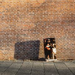 Focus (naturum) Tags: 2019 amsterdam februari february geo:lat=5236505485 geo:lon=492172636 geotagged holland muur nachtwacht nederland negatieveruimte negativespace netherlands nightwatch rembrandt rembrandtvanrijn wall winter noordholland nld
