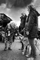 Galgo bn (Joaquín Mª Crespo) Tags: streetphoto callejeo dogs clouds monochromatic people nikon markets marbella byn blackwhite