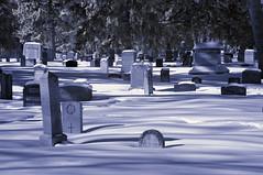 St. Joachim Cemetery (Solojoe) Tags: stjoachimcemetery cemetery winter cold graveyard headstone ir infrared 590nmsupercolor