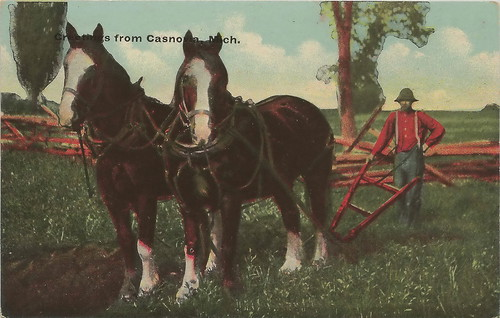 SW Casnovia Muskegon MI Michigan Farming Draft Horse Team pulling a 1 Blade Manually Steered Furrow Plough Divided Back estimate Circa 1910