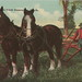 SW Casnovia Muskegon MI Michigan Farming Draft Horse Team pulling a 1 Blade Manually Steered Furrow Plough Divided Back estimate Circa 1910