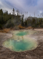 Yellowstone (Mark McLeod Photography) Tags: 2018 autumn markmcleod markmcleodphotography montana wyoming yellowstone yellowstonenationalpark colour fall forest geyser green landscape volcanic thermal pool geothermal
