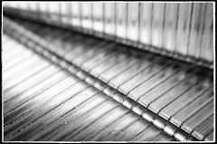 Macro lines (Alex . Wendes) Tags: macro abstract lines lensbaby lensbabycomposor sweet35 sweet35optic 36mmextensiontube f11 d7000 nikond7000