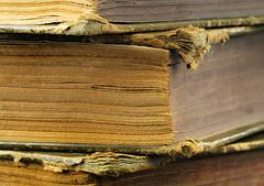 Dog Ears (arbyreed) Tags: arbyreed books dogearedbooks close closeup oldbooks stacked stackofoldbooks vintage texture