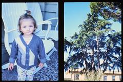 _RAK9743 (Daniele Pisani) Tags: olympus pen velvia50 costanza susanna baby sitter neve cani lea dylan macchina giardino half frame