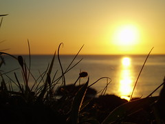 I sat down on the edge of the world and wept as I watched the setting sun (Street.Watcher) Tags: cornwall thelizard coastalpath seascape sea sunset sky