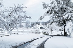 """Winter Wonderland"" (the_lowe_life) Tags: photography explore travel lexington kentuckykicksass 1855 d3300 nikkor nikonnofilter nikon horsefarm farm storm winter snow"