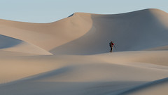 _DSC5049-3 (Brian.Schick) Tags: sand dunes death valley mesquite minimalism abstract