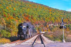 N&W 528  10-10-81 (C E Turley) Tags: railway trains gp30