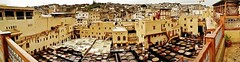 panorama of the tannery (SM Tham) Tags: africa morocco fes medina leather tannery terrace balcony buildings cityscape view panorama balustrade dyes colors tubs vats