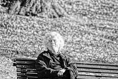 L'artiste 2 - The artist 2 - Portrait Hi-Key (p.franche On - Off) Tags: skancheli monochrome noiretblanc blackandwhite zwartwit blanconegro schwarzweis μαύροκαιάσπρο inbiancoenero 白黒 黑白 чернобелоеизображение svartochvitt أبيضوأسود mustavalkoinen שוואַרץאוןווייַס bestofbw nature bokeh sony sonyalpha65 dxo photolab bruxelles brussel brussels belgium belgique belgïe europe pfranche pascalfranche schaerbeek schaarbeek parcjosaphat josaphatpark homme portrait instantané streetshot humain gens banc novembre2018 man snapshot human people bench november2018