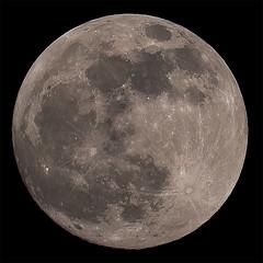 Moon 2019-01-20 (nicklucas2) Tags: astrophotography moon moon2019 moonjan2019 supermoon full
