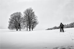 Going up the Hill... (Ody on the mount) Tags: bäume em5ii mzuiko1250 menschen omd olympus pflanzen schnee schneeschuhtour schwäbischealb wald winter bw magic magisch monochrome sw snow trees woods metzingen badenwürttemberg deutschland de
