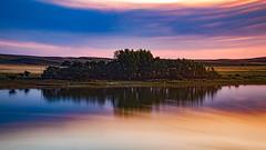 Atardecer en la Laguna y Bosque (Martin Antolin PH) Tags: paisaje landscape sunset sunrise atardecer contraste highcontrast altocontraste contraluz color sky pink orange