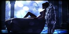 Angel - Sarah McLachlan (Mondi Beaumont) Tags: sl secondlife angel song lyrics romance mood wings heavenly creature sarah mclaughlan fantasy night boat moonlight moon dreaming winter wintermoon pose posing sit sitting animation animated photo photography rowboat solitude city angels soundtrack movie