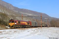 Lardon glacé (Lion de Belfort) Tags: alpes rhônealpes ain virieulegrand class 66 66234 publier evians ecr euro cargo rail régiorail ambérieuenbugey