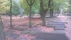 Jüdischer Friedhof Altona (spdaltonaaltstadt) Tags: frankleptien jüdisch friedhof hamburg altona spd