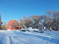 After The Snow. (geevee41) Tags: redbarn trees snow sky winter prairies