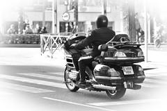 Don't stop me now . (elena m.d.) Tags: moto street guadalajara elena sigma sigma105 monocromo bn bw new calle