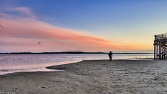 Photographing at Sunset (allentimothy1947) Tags: lincolncity oregon bay beach birds blue camera clouds colorful footsteps man ocean orange photographer photography pier pink reflection sand sky sunset water waves