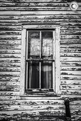 IMG_8219logo (Annie Chartrand) Tags: farmhouse house abandoned ruraldecay illinois calhouncounty antique window monochrome bw blackandwhite