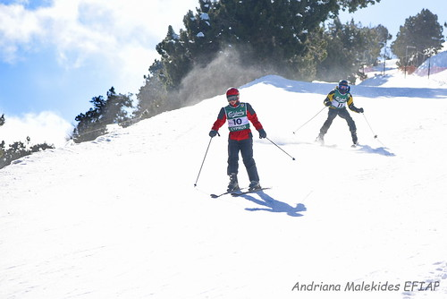 Alpine Races I & II Feb 2019_07