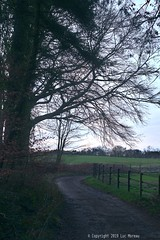 8000 (Spotmatix) Tags: 50mm 50mmf17 a37 belgium brabantwallon camera countryside landscape lens minolta places primes seasons sony villerslaville winter