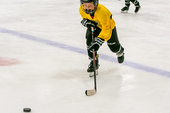 DSC_4284.jpg (Flickr 4 Paul) Tags: chillerdublin hornets pondhockey