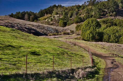 The Dunn Trail