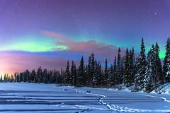 """Nuit nordique"" (Luosto, Finland) (Nicolas Luginbühl) Tags: luosto finland lapland winter auroraborealis northernlights night"